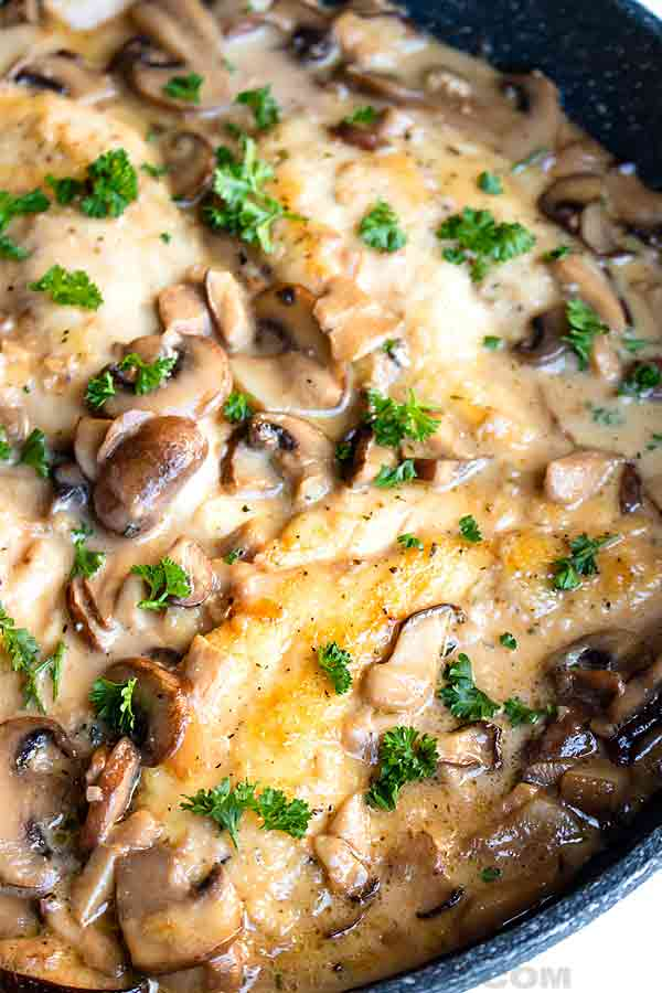 chicken marsala photo