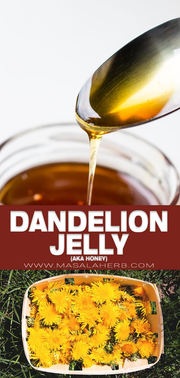 dandelion jelly and honey pin