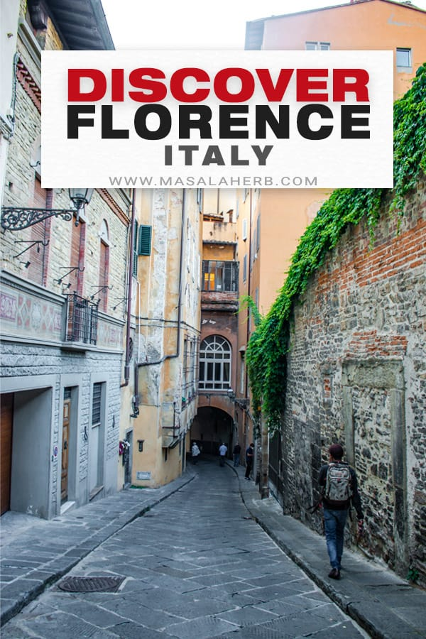 guide to Florence pin image