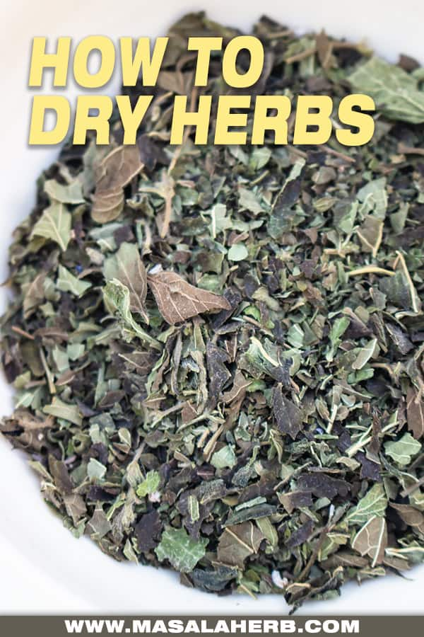 bird's eyes view of dried herbs
