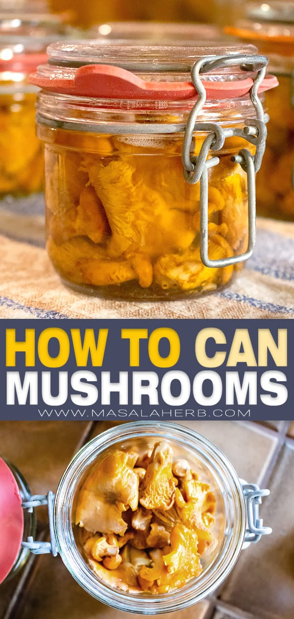 how to can mushrooms pin image