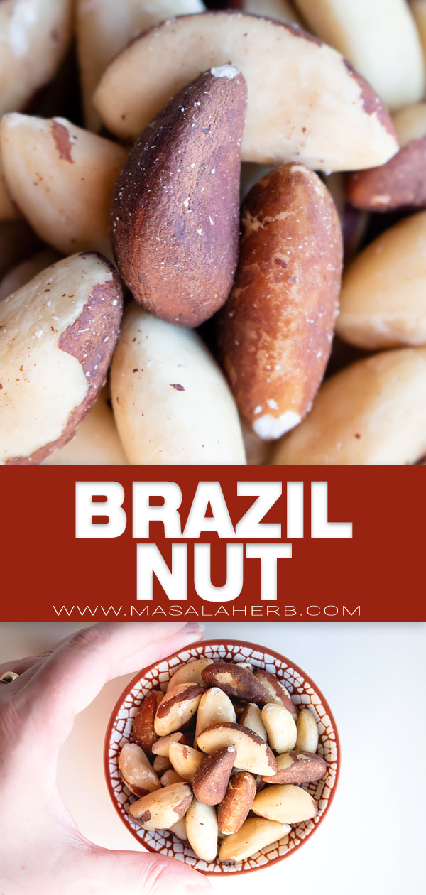 brazil nut pin image