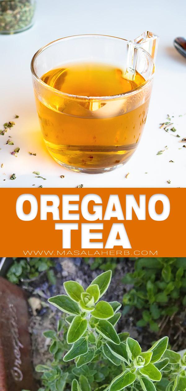 Homemade Oregano Tea pin image