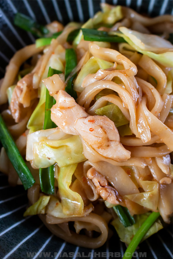 chicken yaki udon stir fry in a bowl with green onion