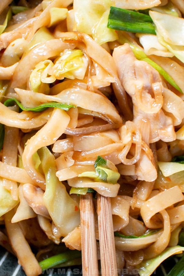 chicken yaki udon noodles