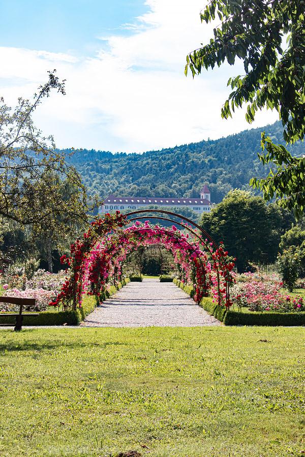 mirabor university gardens