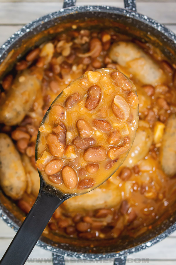 spoon full of pinto beans stewed