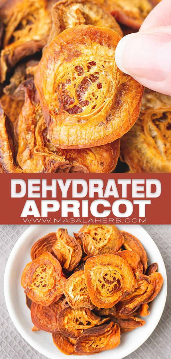 Dehydrated Apricot pin image