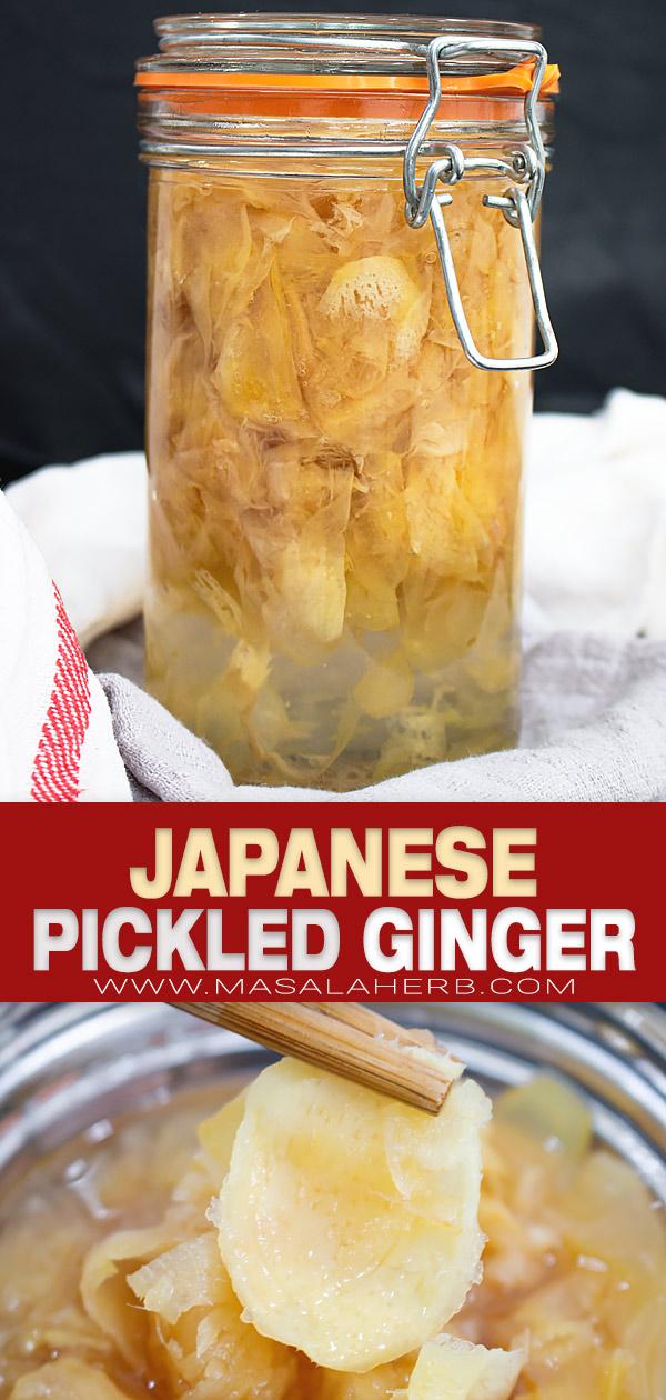 सुशी पिन छवि के लिए जापानी मसालेदार अदरक