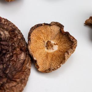 dried shiitake small